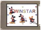 Winstar Colour Graphics LCD